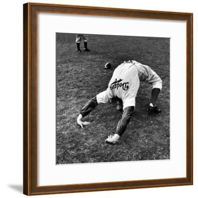 Brooklyn Dodgers Pitcher Ed Albosta Doing Stretching Exercise During Spring Training