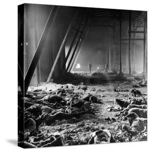 Corpses Litter Gardelegen Warehouse After SS Guards Burn Prisoners to Keep Them Out of Allied Hands by William Vandivert