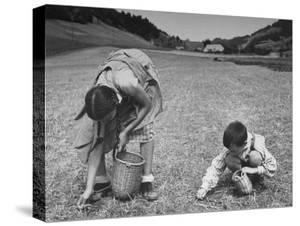 Farm Children Gleaning Field After Wheat Harvest by William Vandivert
