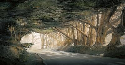 Inside a Dream by William Vanscoy
