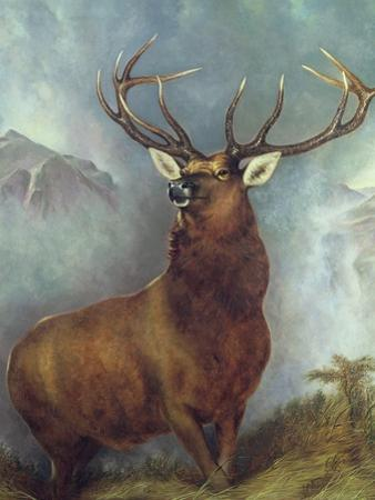The Monarch of the Glen by William Widgery