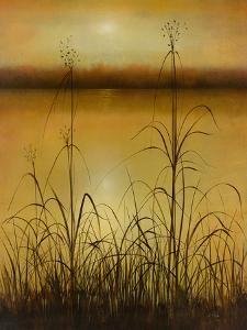 Harvest Pond by Williams