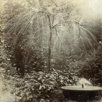 Willow Tree Fountain, Chatsworth, Derbyshire--Photographic Print