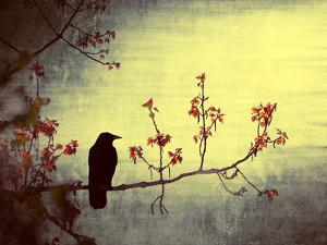 Crow Sitting on a Branch in a Flower Blossom Tree by Wim Koopman