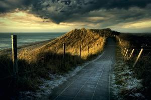 Cold Fence… by Wim Schuurmans