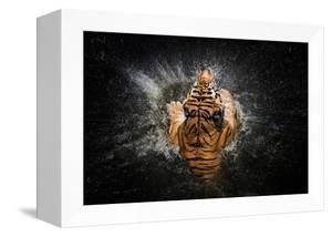 Tiger Splash by Win Leslee