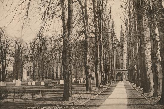 Winchester Cathedral and Avenue, Hampshire, early 20th century(?)-Unknown-Photographic Print