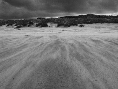 Wind Blown Sand on a Beach-Katrin Adam-Photographic Print
