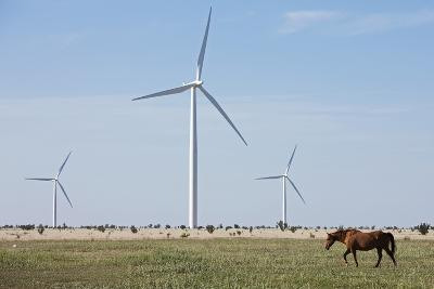 Wind Farm, Vega, Texas-Paul Souders-Photographic Print