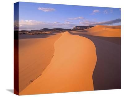 Wind ripples in sand dunes beneath sandstone cliffs, Coral Pink Sand Dunes State Park, Utah-Tim Fitzharris-Stretched Canvas Print