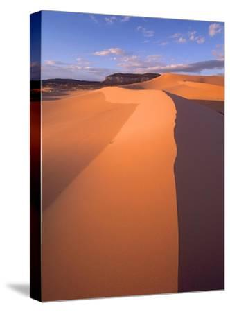 Wind ripples in sand dunes, Coral Pink Sand Dunes State Park, Utah-Tim Fitzharris-Stretched Canvas Print