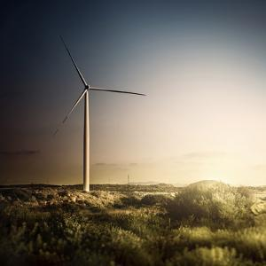 Wind Turbine in a Field in the Evening, Sardinia, Italy