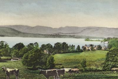 Windermere from Low Wood--Photographic Print