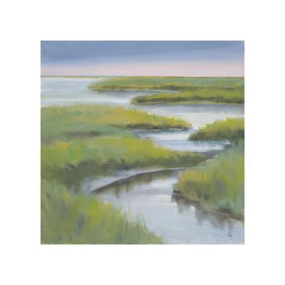 Winding Everglade-Don Almquist-Giclee Print