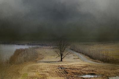 https://imgc.artprintimages.com/img/print/winding-missouri-road_u-l-pym5ai0.jpg?p=0