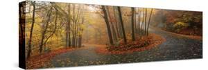 Winding Road Through Mountainside in Autumn, Monadnock Mountain, New Hampshire, USA