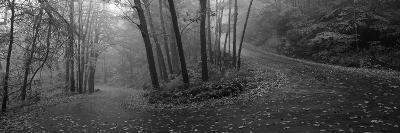 Winding Road Through Mountainside in Autumn, Monadnock Mountain, New Hampshire, USA--Photographic Print