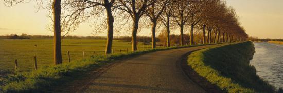 Winding Road, Trees, Oudendijk, Netherlands--Photographic Print