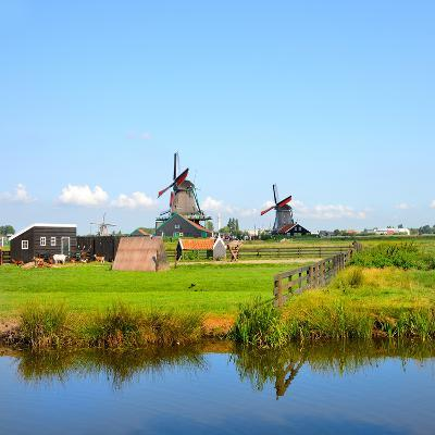 Windmill Amsterdam-Graphicstockphoto-Photographic Print