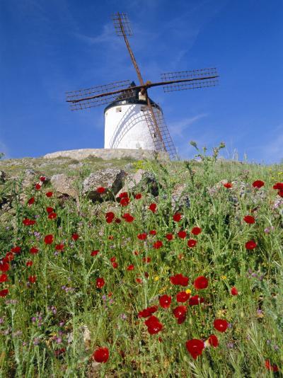 Windmill in Consuegra, Castilla La Mancha, Spain-Gavin Hellier-Photographic Print