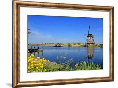 Windmill in Kinderdijk, UNESCO World Heritage Site, South Holland, Netherlands, Europe-Hans-Peter Merten-Framed Photographic Print