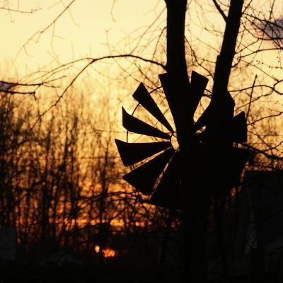 Windmill Silhouette Against Bare Branches and Sunset Sky-Anna Miller-Photographic Print