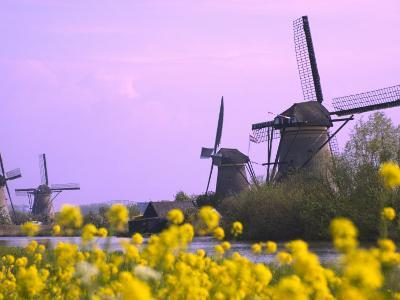 Windmills Along the Canal in Kinderdijk, Netherlands-Keren Su-Photographic Print
