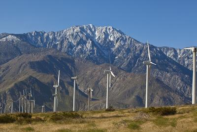 Windmills II-Lee Peterson-Photographic Print