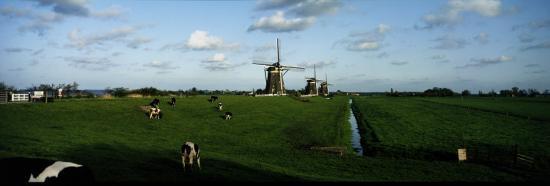 Windmills, Netherlands--Photographic Print