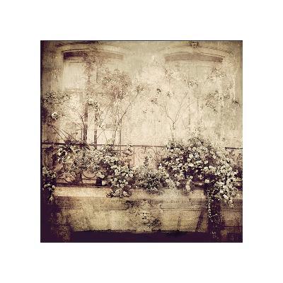 Window Garden-Dawne Polis-Giclee Print