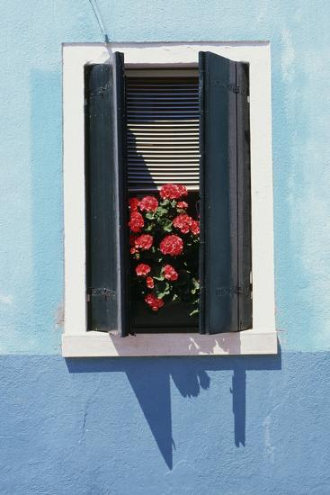 Windowwith Venetian Blinds And Shutters On Blue Wall Burano Venice Photographic Print By Robert Odea Art