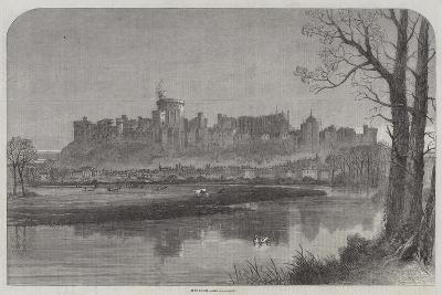 Windsor--Giclee Print