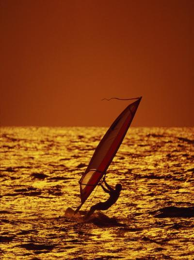Windsurfer Silhouette--Photographic Print