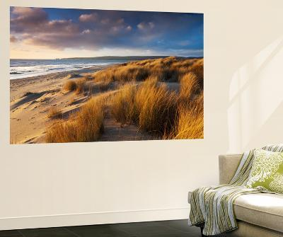 Windswept Sand Dunes on the Beach at Studland Bay, with Views Towards Old Harry Rocks, Dorset-Adam Burton-Wall Mural