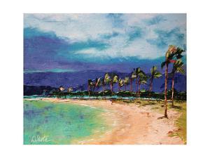 Windy Hawaiin Shore