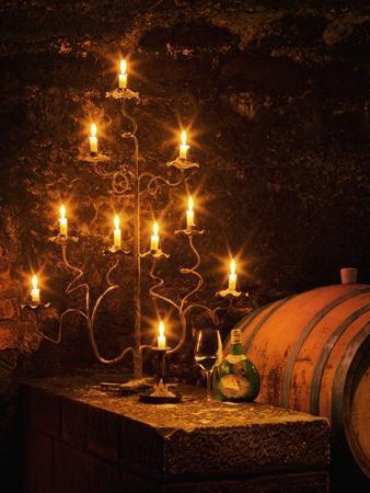 https://imgc.artprintimages.com/img/print/wine-cellar-in-bavarian-castle_u-l-pzl9720.jpg?p=0