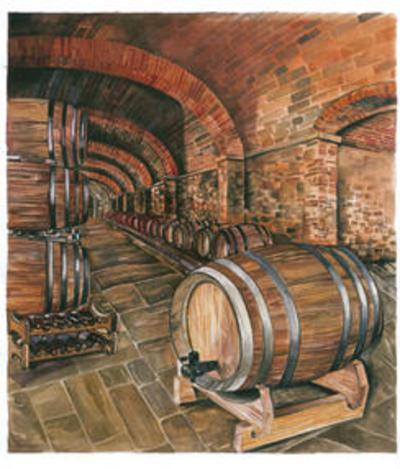 Wine Cellar no. 2--Art Print