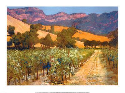 https://imgc.artprintimages.com/img/print/wine-country_u-l-e8fgi0.jpg?p=0