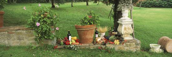 Wine Grapes and Foods of Chianti Region of Tuscany at Private Estate, Italy--Photographic Print