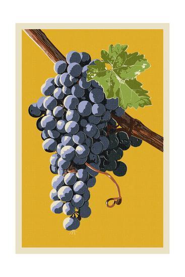 Wine Grapes-Lantern Press-Art Print