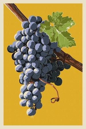 https://imgc.artprintimages.com/img/print/wine-grapes_u-l-q1gpxdq0.jpg?p=0