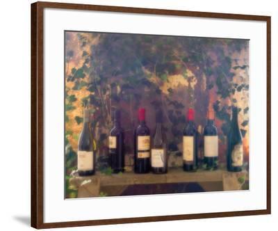 Wine Tasting-Donna Geissler-Framed Art Print