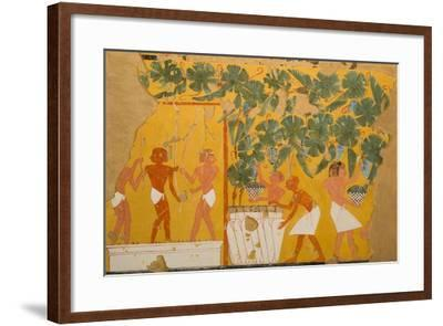 Winemaking, Tomb of Ipuy-Charles Wilkinson-Framed Giclee Print