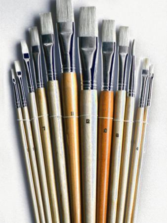 Set of Artist Paintbrushes Fan Out