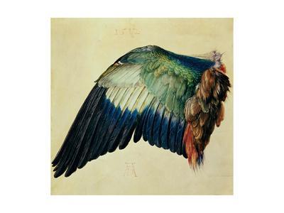 https://imgc.artprintimages.com/img/print/wing-of-a-blue-roller-1512_u-l-o4us70.jpg?p=0