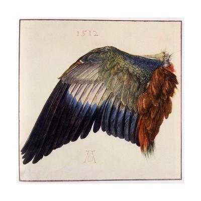 Wing-Albrecht D?rer-Giclee Print