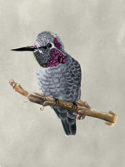 Winged Beauty IV-Naomi McCavitt-Art Print