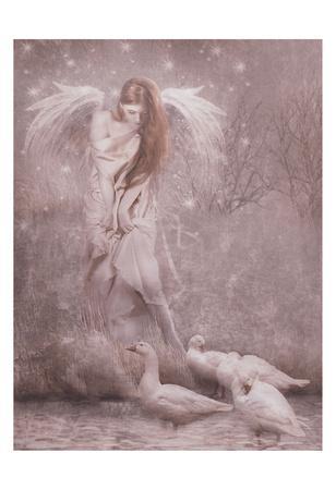 https://imgc.artprintimages.com/img/print/winged-fairie-ii_u-l-f9a6lw0.jpg?p=0