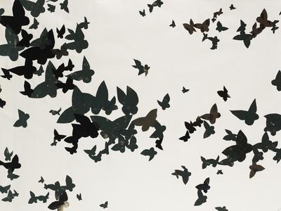 https://imgc.artprintimages.com/img/print/winged-flight_u-l-po9aqt0.jpg?p=0