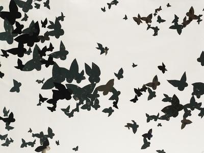 https://imgc.artprintimages.com/img/print/winged-flight_u-l-po9arb0.jpg?p=0